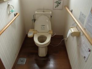 既存大便器。床のフローリングには尿じみが出来て匂いがしていました。