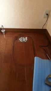 排水位置が現行品と変わりなかったので床板は張り替える必要がありません