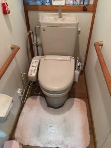 トイレの汚れがなかなか落ちにくくなっているのが不満でした。